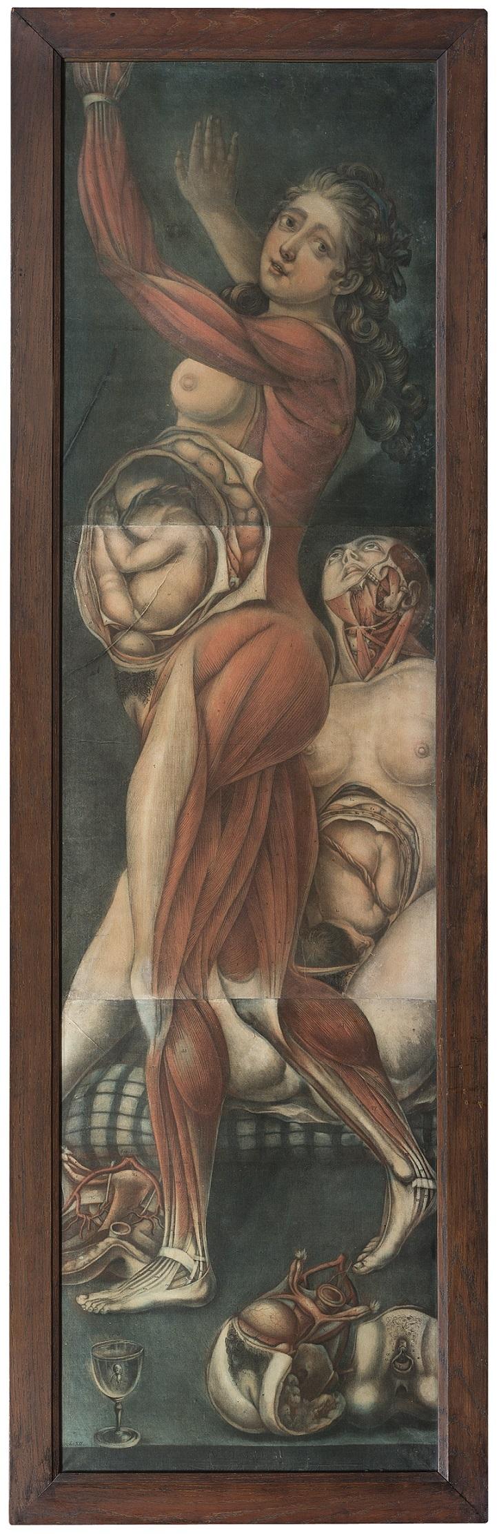 Femmes enceintes_Jacques-Fabien Gautier d'Agoty